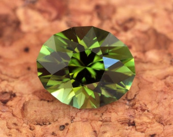 3.57 Carat Mozambique Tourmaline Gemstone Precision Cut Gem