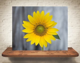 Yellow Sunflower Photograph - Nature Photography - Fine Art Print - Sunflowers - Home Wall Decor - Flower Pictures - Girls Room - Gifts