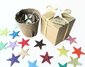 12 Plantable Star Shaped Kids Birthday Party Favors - Unique Plantable Star Shapes for Boys, Girls, Unisex - Star Themed Birthday Parties