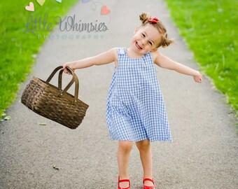 Dorothy Wizard of Oz Girls Dress, Dorothy Dress, Dorothy Halloween Costume, Wizard of Oz Costume, Girls Costume, Toddler Costume, Gingham