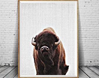 American Buffalo, Buffalo, Bison, American Bison, Buffalo Poster, Bison Poster, Buffalo Print, Buffalo Photo, Buffalo Wall Art Decor, Art