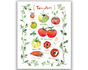 Tomato watercolor illustration print, Kitchen wall decor, Food wall art, Vegetable painting, Kitchen art print, Home decor, Veggie artwork