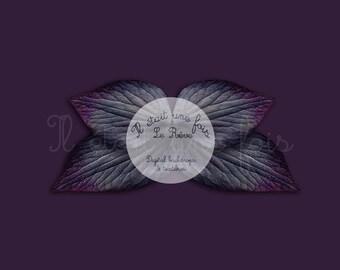 Digital backdrop newborn purple butterfly
