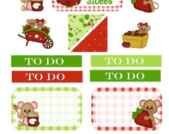 Sampler Strawberry mouse