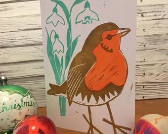 Robin & snowdrops Card
