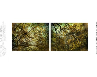 Large Art Surreal Woods Autumn Skies Print Set Dramatic Greens Golden Leaves Starry Sky Fall Trees Branches Fantasy Trees Diptych Photo Set