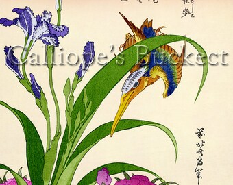 """Kingfisher Irises Pinks, Ukiyo-e woodblock print. (all artworks are sold without the """"Calliope's Bucket"""" stamp)"""