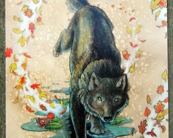 Autumn Black Water Wolf Werewolves of Creation Postcard