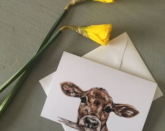 Jersey Calf card-Cows- Jersey cow-Greeting cards-Celebrations-Card