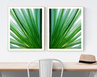 art prints // palm prints // botanical abstract frond // green tropical print set - Green Dream, photograph art print