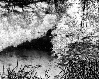Landscape , Fine Art Photography, Nature Photography, Print, Wall Art, Black and White, Imaginary landscape