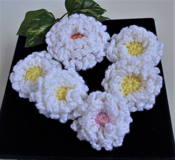 Crochet flower appliques white mums fluffy curly petals set of mightylinksfo