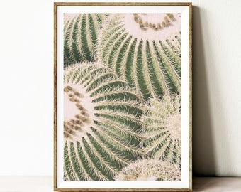 Affiche imprimable cactus, art mural en téléchargement numérique, téléchargement Digital art, décor cactus à la maison, décoration murale, photographie du désert