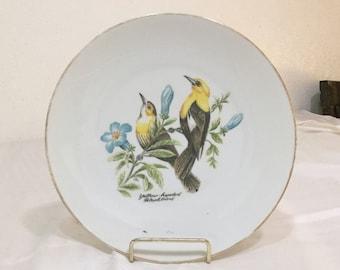 Yellow-Headed Blackbird Bareuther Waldsassen Bavaria Vintage Plate