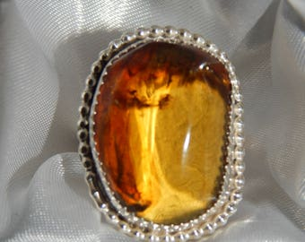 Unique Custom Amber Double-Shank Beaded and Scalloped Bezel Ring Size 7