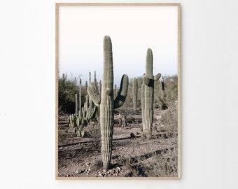 Desert Printable, Saguaro Cactus Photography, Boho Modern Decor, Cactus Wall Art Prints, Download, Desert Sunset Pastel Print, sc1cp