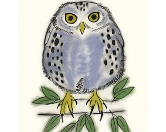 Owl art Fred   bird 4 X 6 print - 4 for 3 Sale