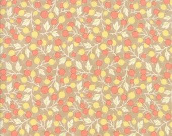 Coney Island Fabric - Tan - Fig Tree Fabric - Tan Quilting Fabric By The 1/2 Yard
