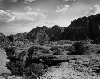 Snowy Canyon State Park, Utah Photography, Desert Print, Southwest Art, Gritty Nature, Black and White Print, St. George Utah