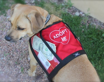Size Small-Medium fundraising adoption vest with large clear pockets for donations, animal rescue, shelter, RED vest for fund raising events