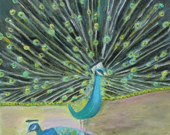 1 Peacock Strutting His Feathers Greeting Card with Envelope Included (3 x 5)