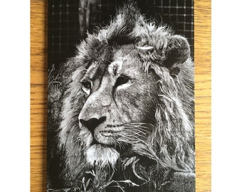 Lion hand drawn greeting card