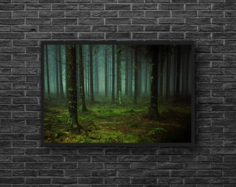 Dark Forest Photo - Woodland Photo - Deep Forest Photo - Forest Landscape Photo - Forest Photo - Forest Wall Art - Forest Wall Decor