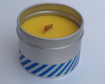 Citronella scented outdoor candles - handmade citronella scented candles in lovely silver tins with clear lids.