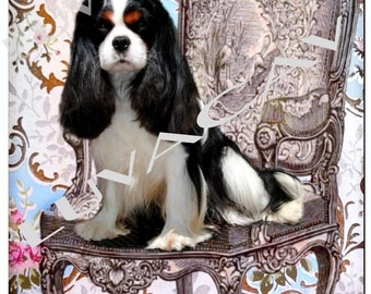 Tricolor Cavalier Photo Collage/Treat Me Like Royalty
