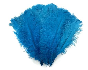 """Ostrich Feathers, 1/2 lb - 11-13"""" TURQUOISE Ostrich Drabs Wholesale Body Feathers (Bulk) : 3807"""