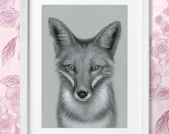 PRINT: Foxy! Fox Print, Framed Print, Decor, Wall Art, Animal Portrait, Illustration, Drawing