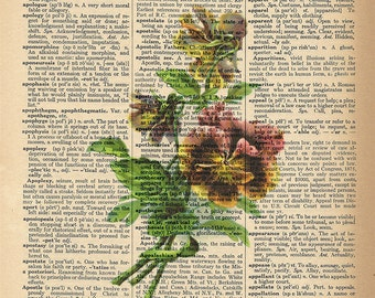 Dictionary Art Print - Pansy - Great Sunroom or Garden Decor - Upcycled Vintage Dictionary Page Poster Print - Size 8x10