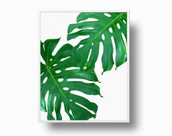 Monstera Deliciosa Print, Green Leaves Print, Tropical Leaf Print, Philodendron Print, Monstera Deliciosa, Tropical Decor, Instant Download