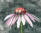Coneflower Painting - Pri...