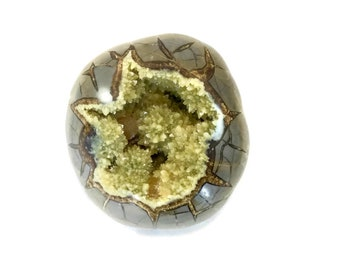 Septarian Nodule with Crystals