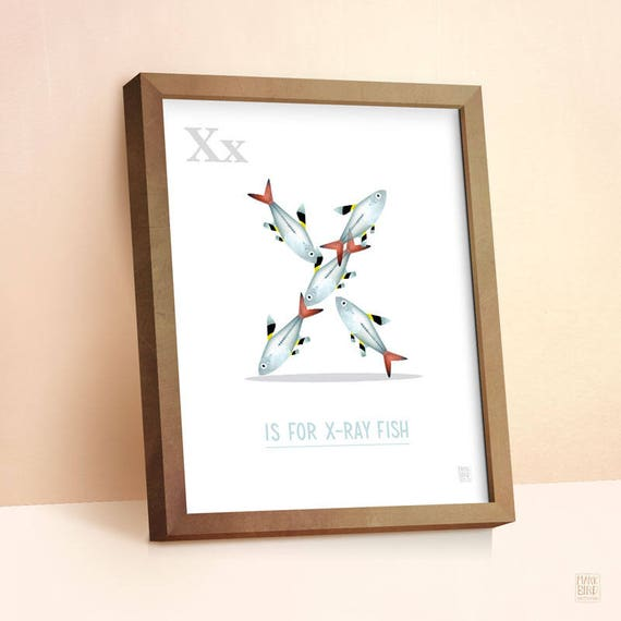 X-Ray Fish Print Nursery Animal Print Alphabet letters
