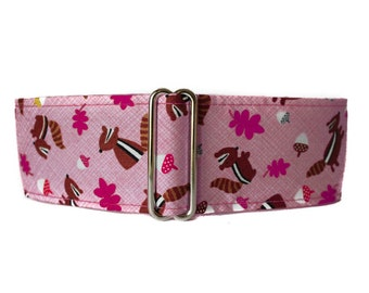 2 Inch Martingale Collar, Chipmunk Martingale Collar,  Chipmunk Dog Collar, Pink Dog Collar, Martingale Collars for Greyhounds, Levrier