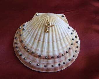Decorated Clam Shell
