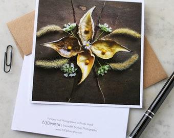 Golden Milkpods Mandala Note Card with 5x5 square envelope, blank inside