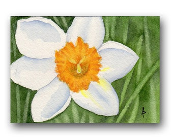 ACEO watercolor DAFFODIL close up original painting SFA miniature  dollhouse mini