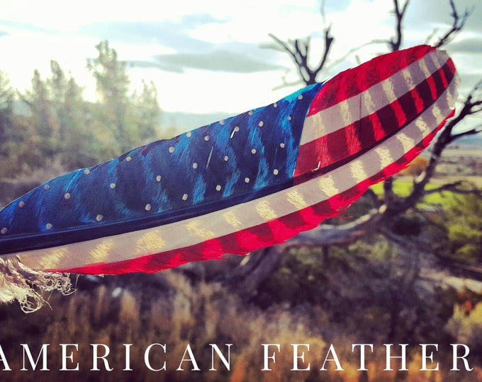 Large  Classic American and Patriot Feathers