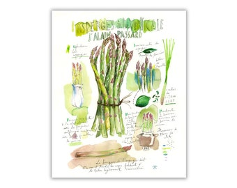 Bunch of asparagus, Asparagus recipe poster, Vegetable print, Kitchen art, Watercolor food painting, Green kitchen decor, Botanical poster
