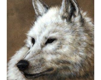 The White Wolf - Print
