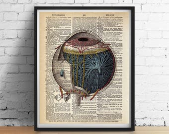 Antique EYEBALL Eye Art Print, Eye Anatomy Poster Optometry Illustration Vintage Dictionary Book Page, Dorm Decor Office Wall Art, Eye Gifts