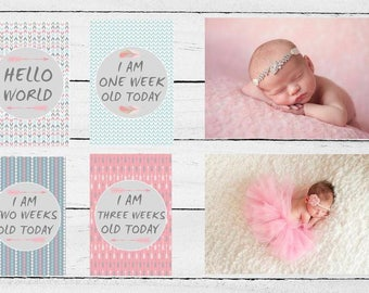 Baby Girl Milestone Cards - 16 cards - Baby's first year