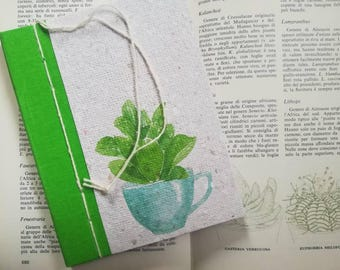Garden journal, Bullet Journal, Notebook, A6 recycled paper diary, Cactus