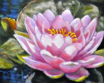 Waterlily in the Light 2