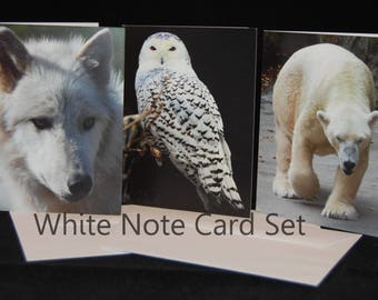 Animal Photography Note Cards with Envelopes- Set of 3 in White
