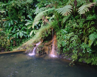 Waterfall in the Caribbean Island of Dominica