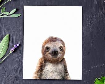 Sloth print, Nursery art, PRINTABLE art, Zoo animals, Nursery decor, Animal art, Baby animals, Nursery wall art, Kids art, The Crown Prints